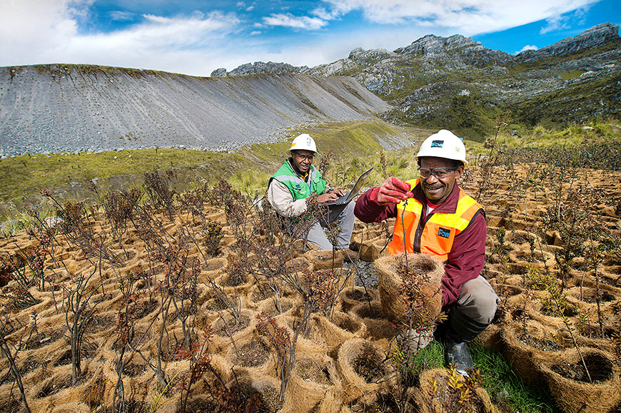 PTFI overburden stockpiles are re-vegetated using a variety of native plants with a goal of forming an alpine ecosystem similar to pre-mining conditions.