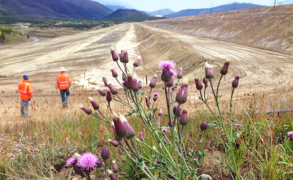 Members of the Tailings Stewardship Team (TST) inspect the Henderson Tailings Dam in Colorado.
